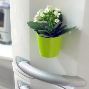 vasos-magneticos-para-decorar-sua-casa-2